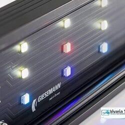 Pulzar LED